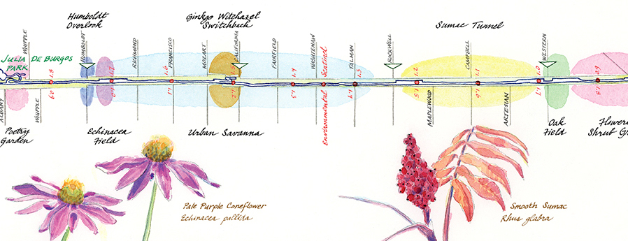 The 606 bloom map